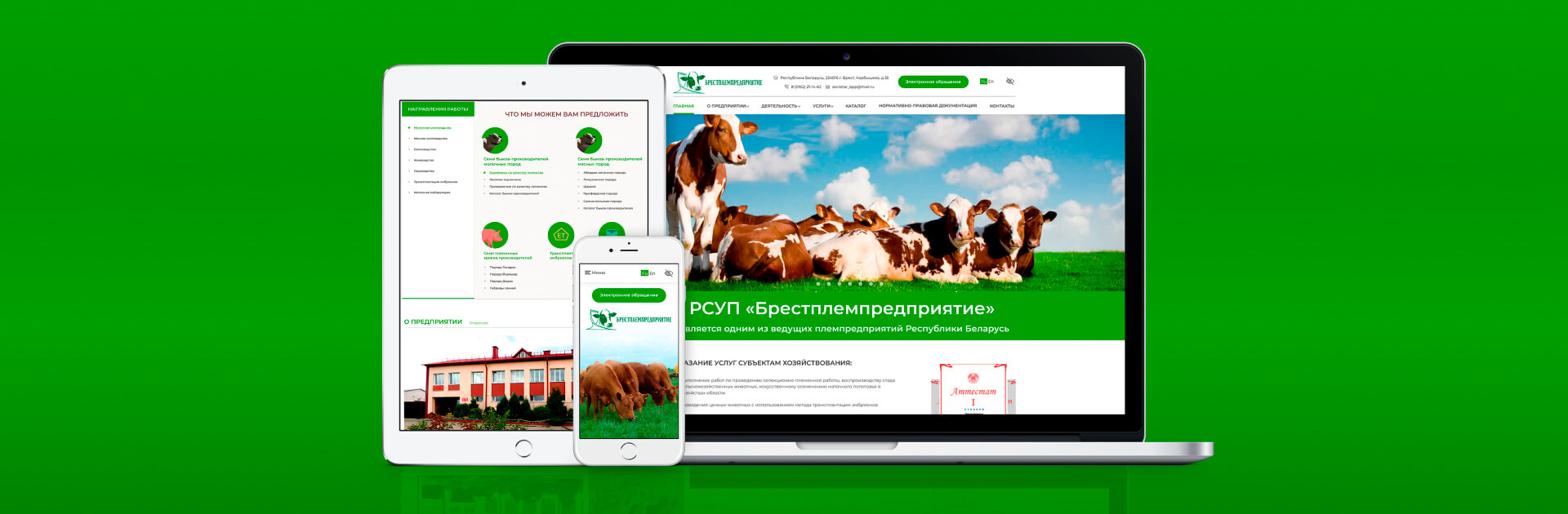 Development of a corporate website for an agricultural organization