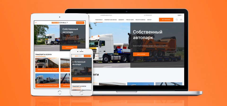 Corporate website for Transconsult